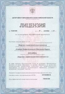 Лицензия - страница 1